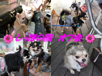 komusan_0830_4