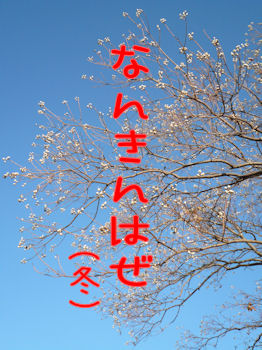 komusan_0902_005