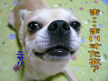 komusan_0902_0_007