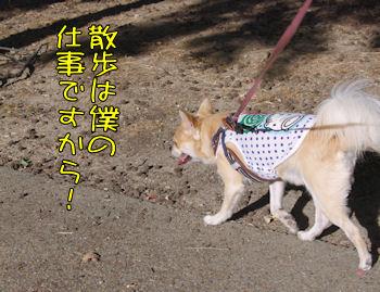 komusan_0920_002