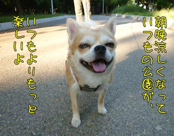 komusan_0920_006