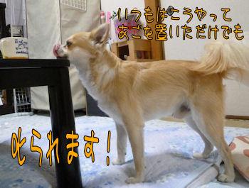 komusan_0921_003