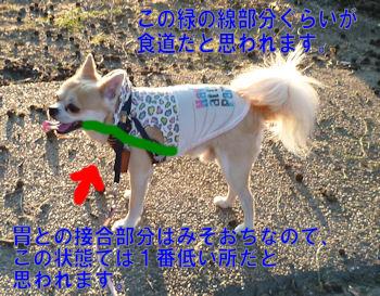 komusan_0921_004