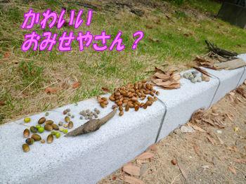 komusan_0928_001