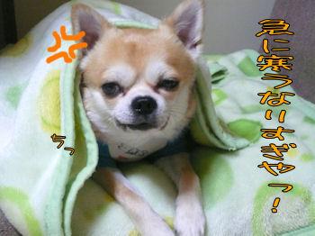 komusan_1028_005
