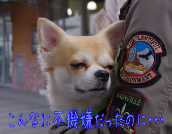 komusan_1128_007