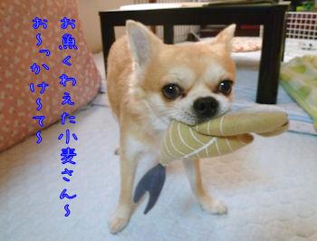 komusan_1202_001