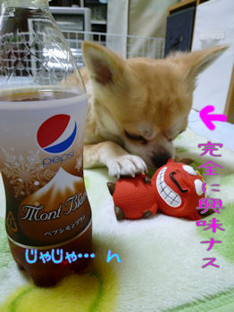 komusan_1209_004