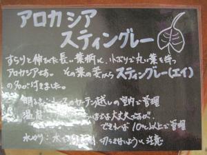 2012/10/08ブログ用 006