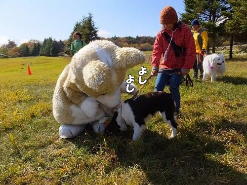 2013.11.2~4清里旅行その2 197