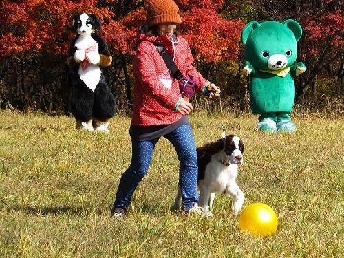 2013.11.2~4清里旅行その2 174