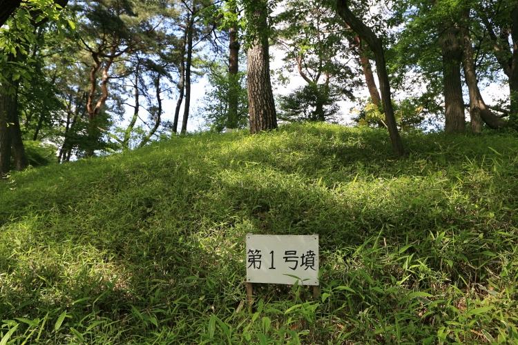 tamagawa_0015 f