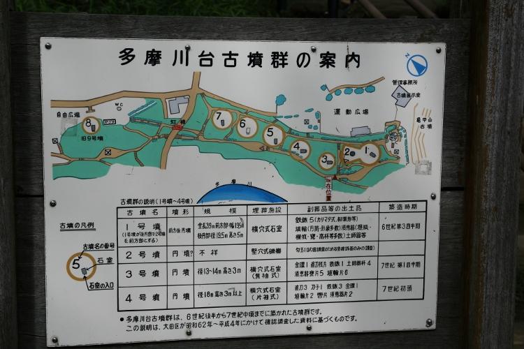 tamagawa_0017 f