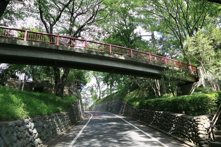 tamagawa_0020 f