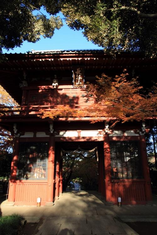 hondoji1202_0001f.jpg