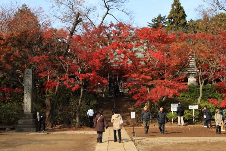 hondoji1202_0024f.jpg