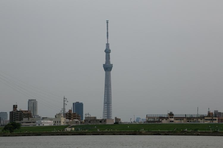 horikiri-d_0011f.jpg