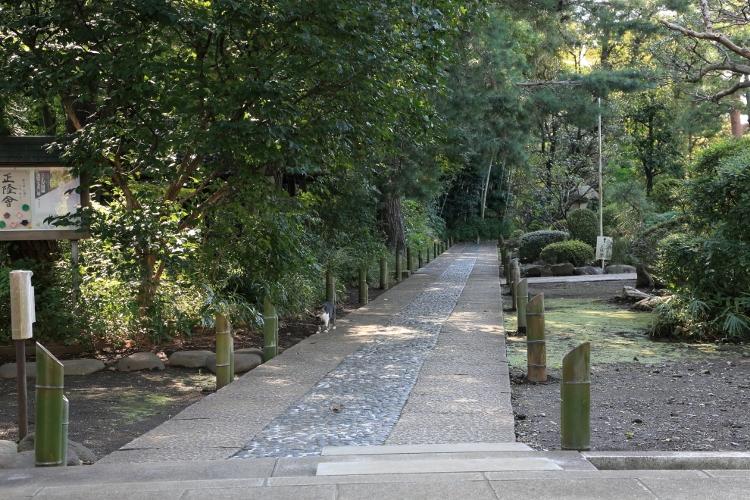 kugayama1020_0015f.jpg