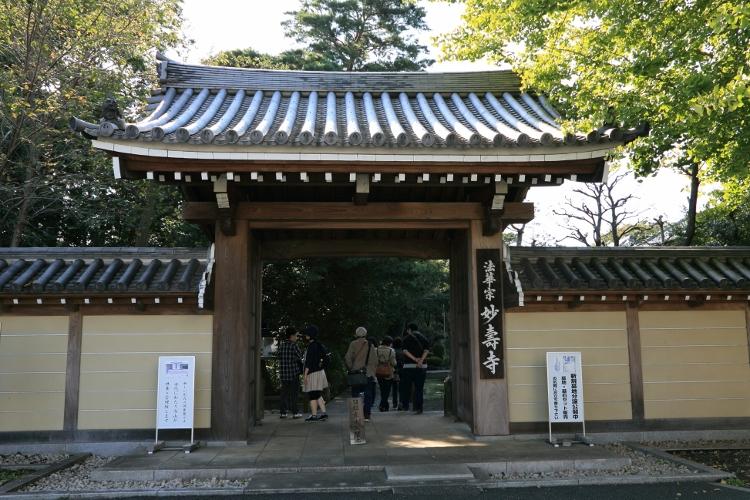 kugayama1020_0016f.jpg