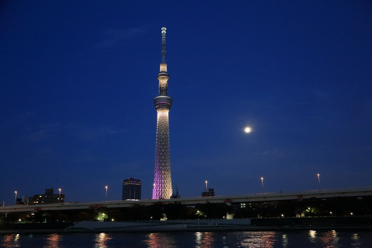 skytree-irumi_0005f.jpg