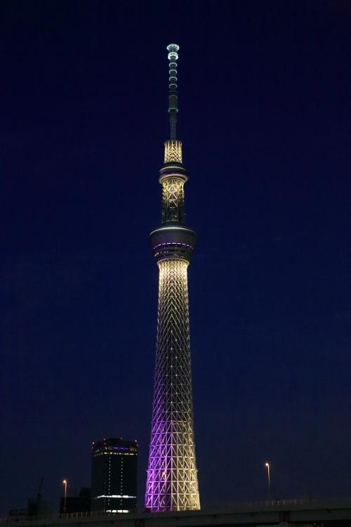 skytree-irumi_0007f.jpg