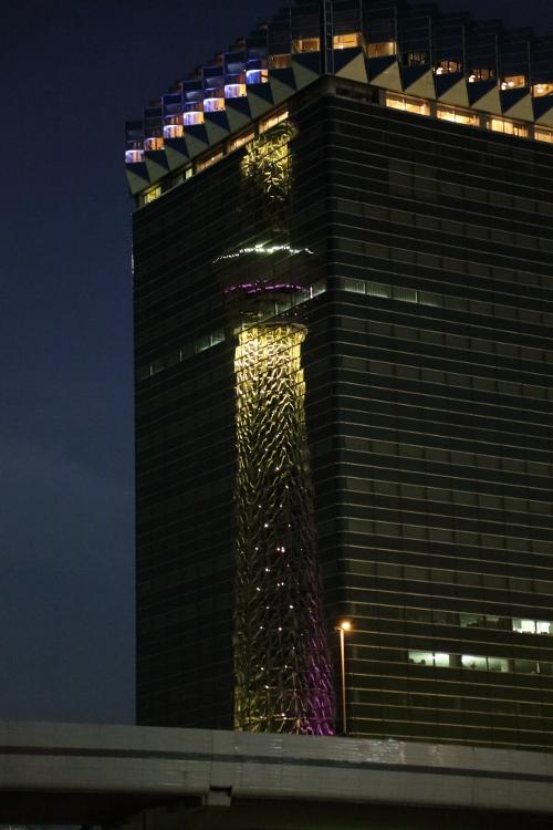 skytree-irumi_0010f_20120614214014.jpg