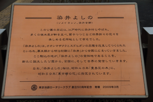 sugamo_0031f.jpg