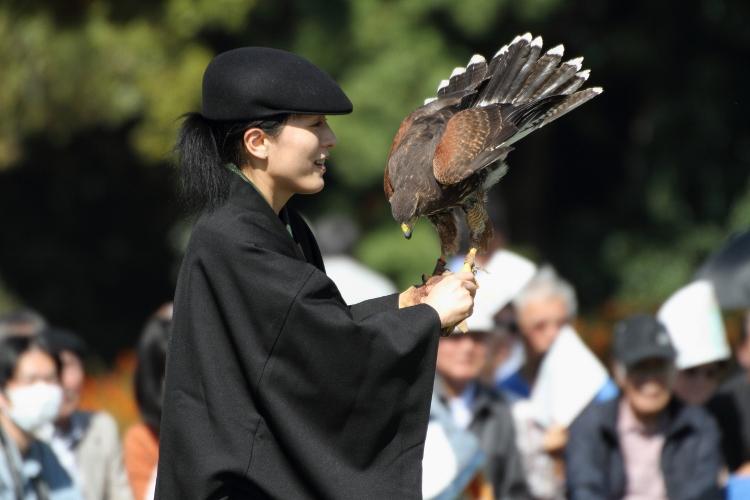 takajo_0028f.jpg