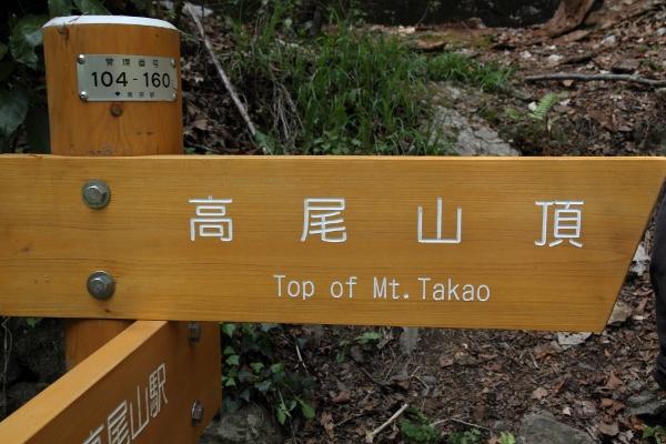 takao_0013f.jpg