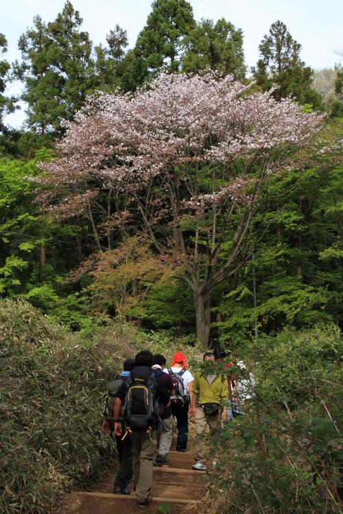 takao_0024f.jpg