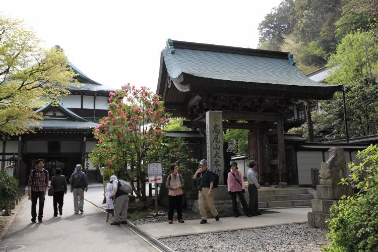 takao_0025f.jpg