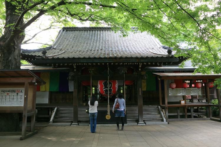 tamagawa_0038f.jpg