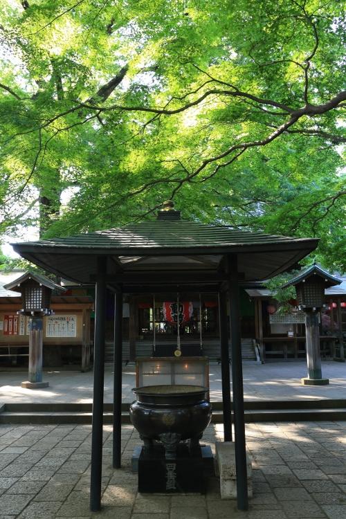 tamagawa_0040f.jpg