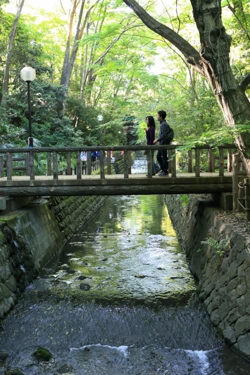tamagawa_0044f.jpg