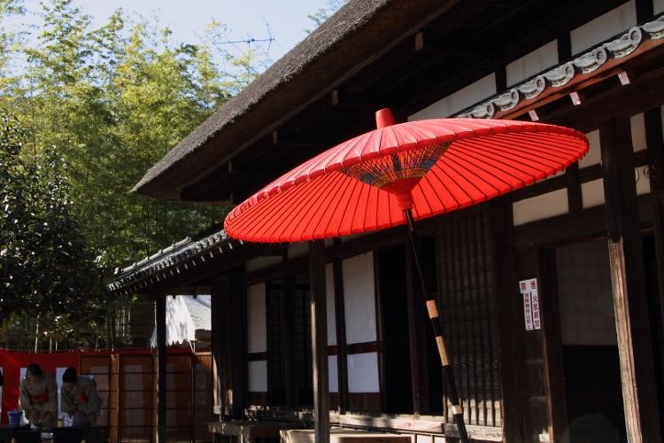 toshi-n1104_0019f.jpg