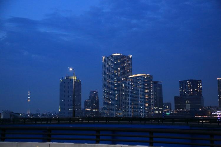 toyosu-t_0027f.jpg