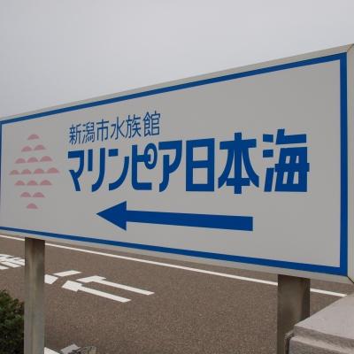 12_100725108_01.jpg