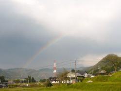 20110425虹~♪2