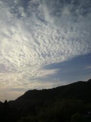 20110525空