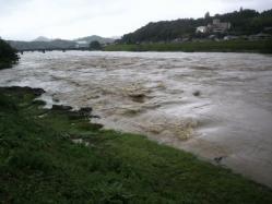 20110530川の水 (゜ロ゜;三;゜ロ゜)