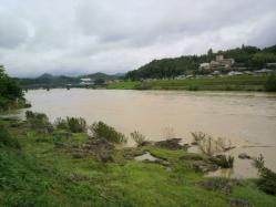 20110531川の水 (゜ロ゜;三;゜ロ゜)2