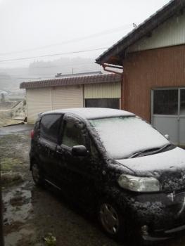 今シーズン 初雪