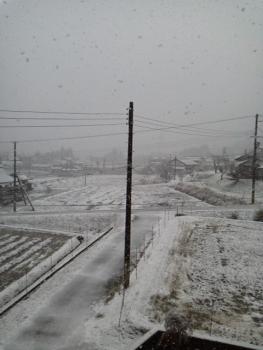 今シーズン 初雪2