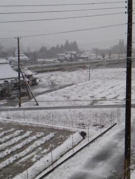 今シーズン 初雪3