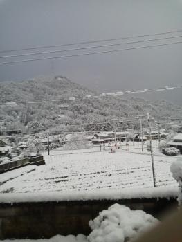 20131228雪2