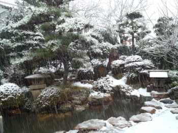 20140109雪