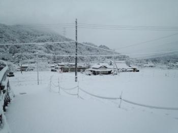 20140110雪