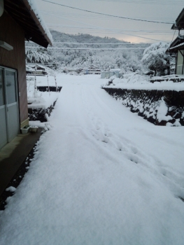 20140110雪3
