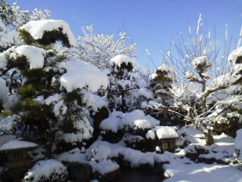20140110雪5