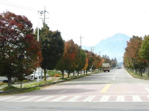 DSCN9831 野辺山